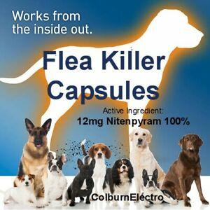 50 Instant Flea Killer Pills - Small Dogs / Cats Bulk Capsules (under 25 pound)