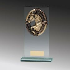 Equestrian Glass trophy Award in 4 Sizes with FREE Engraving up to 30 Letters