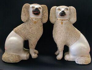 Antique Pair of Staffordshire Poodles c.1850 (Large)