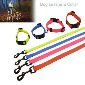 Adjustable Pet Dog Collar Reflective TPU Polyester Strap Collar and Leashes