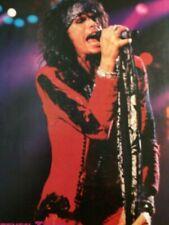 Steven Tyler, Aerosmith, Full Page Vintage Pinup