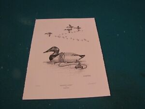 """Mitchell Canvasback Decoy Print """"Madison's Legacy"""" by Durand Ball, signed Artist"""