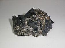 Dravite crystals in Mica Schist. Sybella Granites, Mount Isa, Queensland.   S140