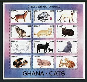 Ghana 1683-1684, MNH Nature, Domestic animals Cats 1994  x18605