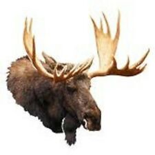 Moose Head Antlers Metal Wall Décor Wildlife Den Hunter Cabin Rustic Wall Trophy