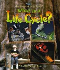 What Is a Life Cycle? What Is a Bat by Bobbie Kalman (1998, Paperback)