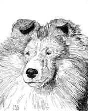 Shetland Sheepdog Print