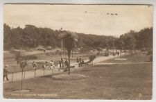 Bournemouth Raphael Tuck & Sons Posted Collectable Dorset Postcards