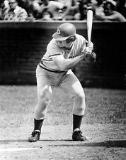 CLASSIC YOUNG PETE ROSE ALLTIME HITS KING AT BAT PORTRAIT REDS  8x10