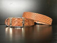 Patrón de luz marrón cuero collar de perro-Bassett-Golden Retriever-HUSKY-Terrier