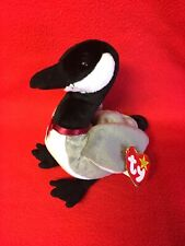 Ty  Beanie Babies Collection LOOSY Canada Goose Gray/Black Water Bird  NEW