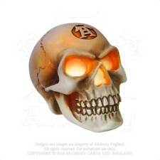 AE V42 - Skull LED Light Eyes - Illuminated Skull Desk Ornament.