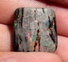 Precious Opal Wood from Virgin Valley Nevada - 8.3 ct - opalized