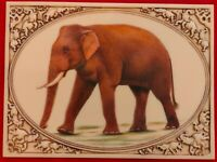 Hand Painted Elephant Horse Camel Miniature Painting India Art Carved