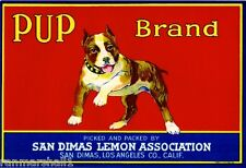 San Dimas Staffordshire Terrier Pup Dog Lemon Citrus Fruit Crate Label Art Print