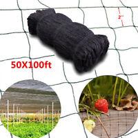 "100'X50' Anti Bird Net Baseball Poultry Soccer Game Fish Netting 2"" Mesh Holes"