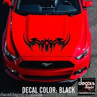 UNIVERSAL GRAPHICS DECAL VINYL STICKER FITS ANY CARS OR TRUCKS