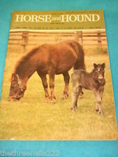 HORSE and HOUND - ARAB HORSE AND PONY BREEDING - MARCH 23 1979