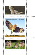 OWLS VERY INTERESTING   4  USSR SOUVENIR SHEET LIMITED EDITION!!