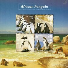 South African PENGUINS / Sea Bird Stamp Sheet 2014 Gambia / Sea Marine Life #23
