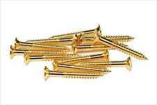"#3 x 3/4"" Phillips Oval Head Wood Screw - misc guitar hardware - Gold"