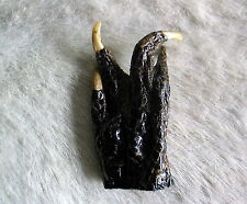 UNUSUAL ALLIGATOR FOOT COLLECTIBLE TAXIDERMY STAR TREK LIVE LONG AND PROSPER 2