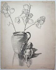 Original 1920's/30's original ink illustration. honesty plant, Lunaria.