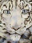 The Snow Leopard by Morris, Jackie Hardback Book The Cheap Fast Free Post