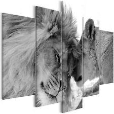 Wandbilder xxl 225x100 cm Löwen Tiere Liebe Afrika schwarz-weiß g-B-0034-b-n