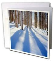 Greeting Cards with Envelopes - Set of 12 Greeting Card