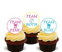 Gender Reveal Twins Edible Cupcake Toppers, Standup Fairy Cake Bun Decorations