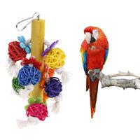 Oiseau Perroquet À Mâcher Jouets Rotin Naturel Cage Ball Jouet Preening PM