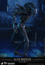 Hot Toys MMS Aliens 1986 Alien Warrior Xenomorph 1/6 Scale Sideshow USA In Hand!