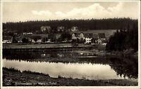 BOCKSWIESE um 1930 Echtfoto-AK Wald Teich Villen Häuser Ansichtskarte Postkarte