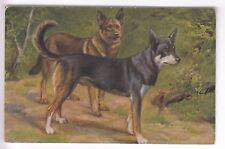 CPA  ANIMAL FANTAISIE -  CHIEN DOG  BERGER BELGE MALINOIS EN COUPLE 1910 ~B97