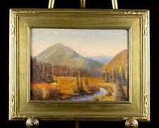 CIRCA 1920's LANDSCAPE - MOUNTAINS AND STREAM