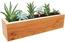 Succulent Wood Planter Rectangular Garden Box Cedar Indoor Outdoor Window Desk