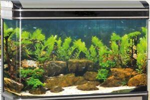 Aquarium Fish Tank Tropical Marine LED Lighting - 90L Black