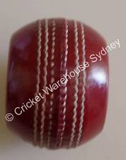 1 X THE BOWLER'S PRACTICE CRICKET BALL