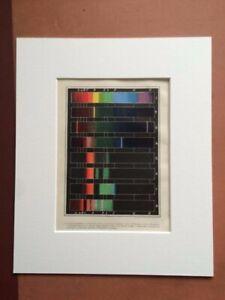 1880 Spectrum Framed Original Antique Print Old Vintage Science Wall Art