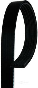 Serpentine Belt  ACDelco Professional  5K715