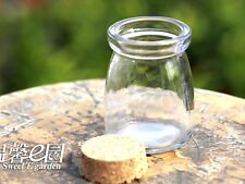 Clear Empty Glass Micro Landscape Vials Wish Bottles with Cork 75mm Fairy Garden