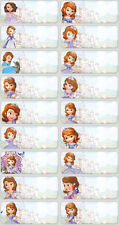 Clearance Sale -60 Disney Sofia pics personalised name label (Large size)