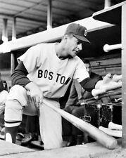 1965 Boston Red Sox CARL YASTRZEMSKI Glossy 8x10 Photo Dugout Print Poster