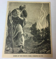 1885 magazine engraving ~ MOSES AT THE BURNING BUSH