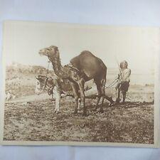 Photo Flandrin - large Heliograph Editions Mars - 73 Maroc le départ pour labour