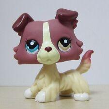 Littlest Pet Shop Animal LPS Toys #1262 Colorful Eye Cream Collie Dog Rare