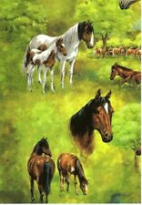 "HORSES GIFT WRAPPING PAPER -Large 26""x100' Roll"