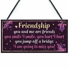 Funny Friendship Sign Hanging Friend Plaque Birthday Christmas Gift Thank You