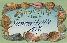 Summitville NY * Shell Border Souvenir ca 1908 * Sullivan Co.  Mamakating